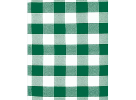 Forest & White Check